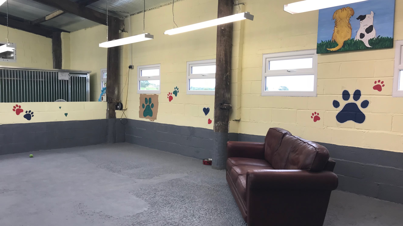 Muttlins Indoor Exercise/Play Area